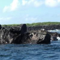 Galàpagos og Charles Darwin