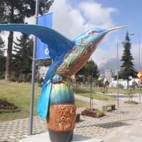 Kolibrienes by